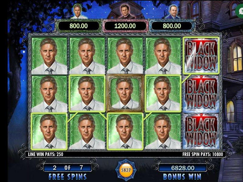 Black Widow Video Slots Game Choose To Play For Free